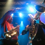 fanfare-ciocarlia-fleda-2014-02-043