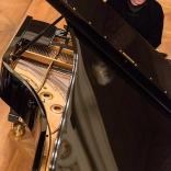 say-fazil-filharmonie-2014-03-016
