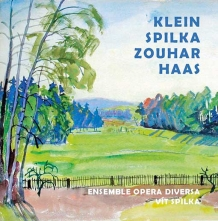 Nespojitá linka Klein–Spilka–Zouhar–Haas