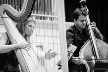 Harfa a kontrabas? Filharmonie Brno zvyšuje laťku