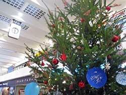 Vánoční mše v Alfě