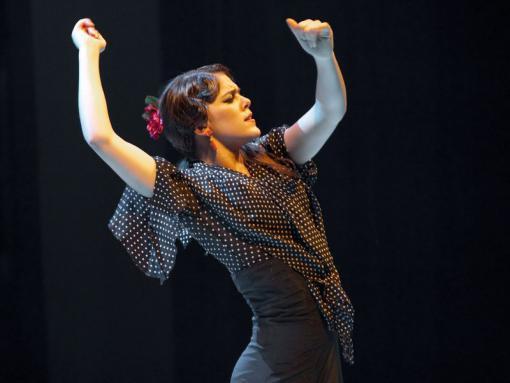 Festival Ibérica:  flamenko, koncerty a tvůrčí dílny