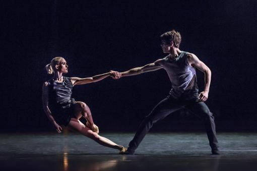 Dnes začíná festival Dance Brno 100