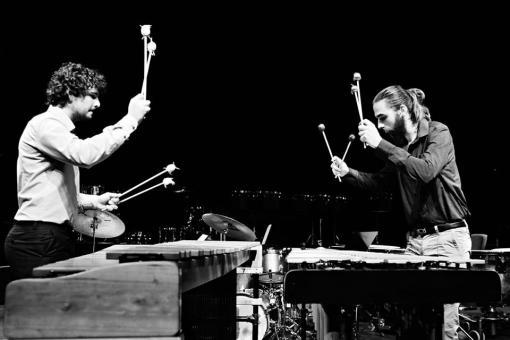 Festival bicích nástrojů: Workshopy, koncerty a prodejní výstava