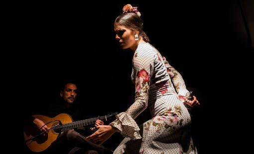 Flamenkový seminář s Cristinou Aguilerou
