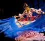 Festival Ibérica: Španělští umělci navštíví Brno až v srpnu