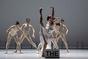 Dance Brno 2021: Festival současného profesionálního baletu vČeské republice